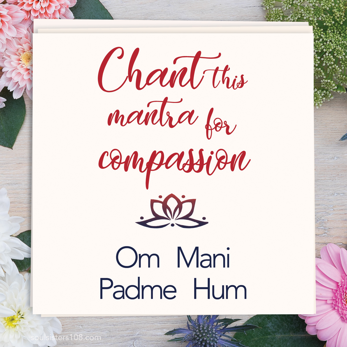 Soul Sisters 108 Mantra Cards Compassion