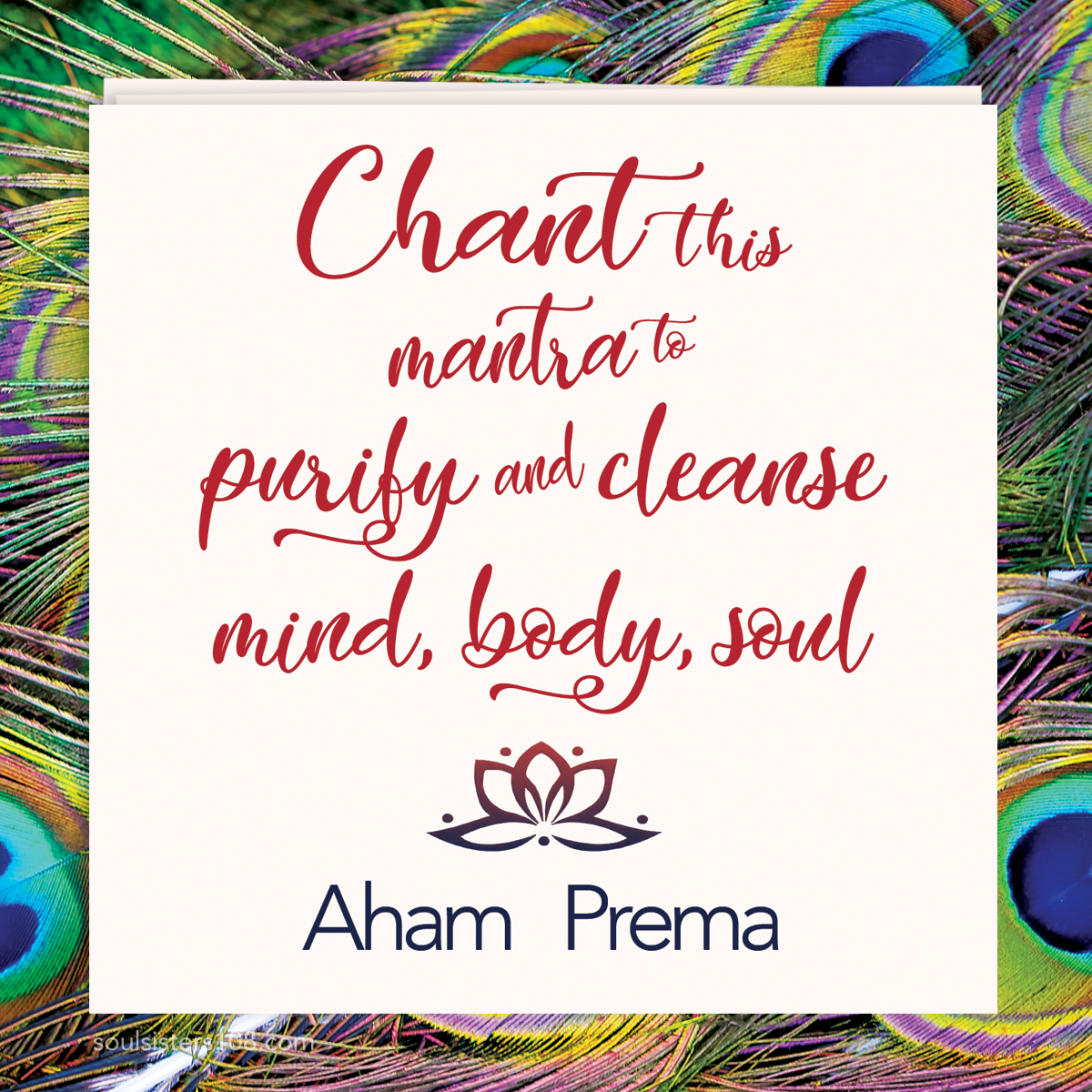Soul Sisters 108 Mantra Cards Purity & Calm